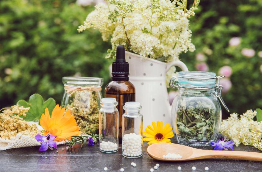 צמחי המרפא בשירות המערכת החיסונית