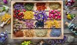עולם צמחי המרפא מציע פתרונותו יצירתיים