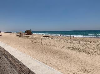 חוף בת ים. בקרוב יגיעו היאכטות?