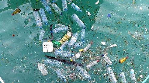 דמיינו עולם ללא כלים חד פעמיים וללא בקבוקי שתייה שמוטלים בכל מקום