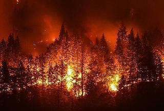 הטמפרטורות ממשיכות לעלות ושריפות ענק משתוללות בקליפורניה ובאוסטרליה