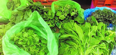 עלים ירוקים ושורשים מהשוק