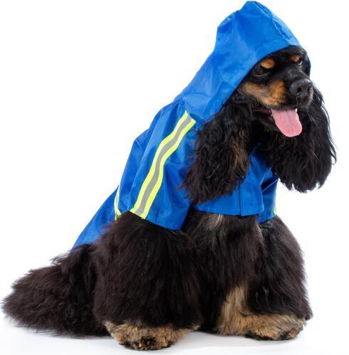 מעיל שמגן מפני קור וריח חזק של פרווה רטובה. Pet-Best