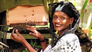 """סוזי בן אליהו. """"חיינו תלויים בדבורים"""""""